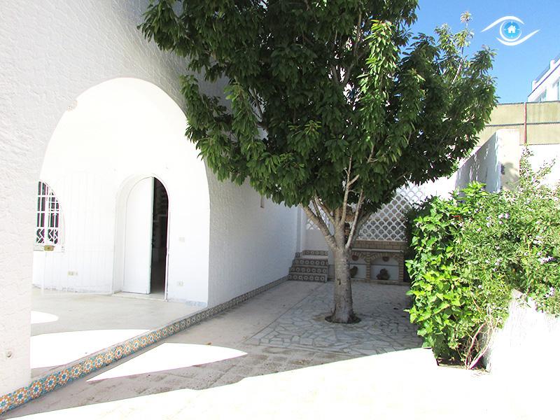 Villa el ksour hammamet tunisie for Vente plantes artificielles tunisie
